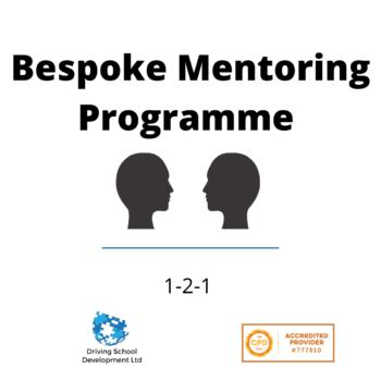 Bespoke 1-2-1 Mentoring Programme